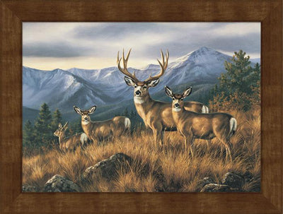 <I>Crossing The Ridge&mdash;mule Deer</i> Framed Studio Canvas<Br/>22H X 29W Art Collection