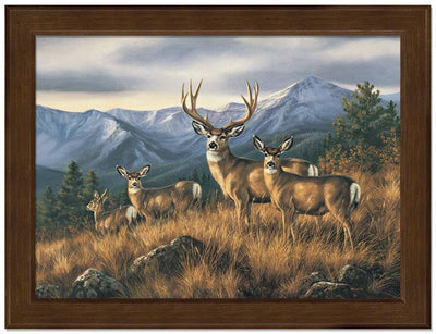 <I>Crossing The Ridge&mdash;mule Deer</i> Framed Studio Canvas<Br/>17H X 22W Art Collection