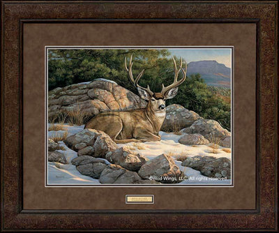 <I>Rocky Outcrop&mdash;mule Deer</i> Gna Premium+ Framed Print<Br/>29H X 35W Art Collection