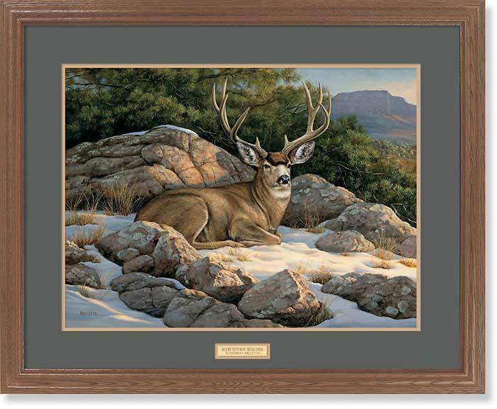 <I>Rocky Outcrop&mdash;mule Deer</i> Gna Premium Framed Print<Br/>25H X 31W Art Collection