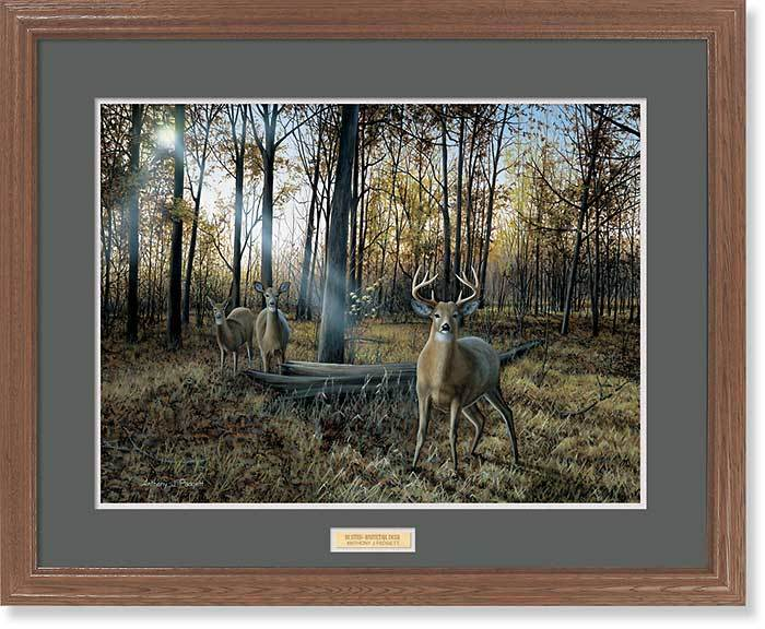 <I>Busted&mdash;whitetail Deer</i> Gna Premium Framed Print<Br/>25H X 31W Art Collection