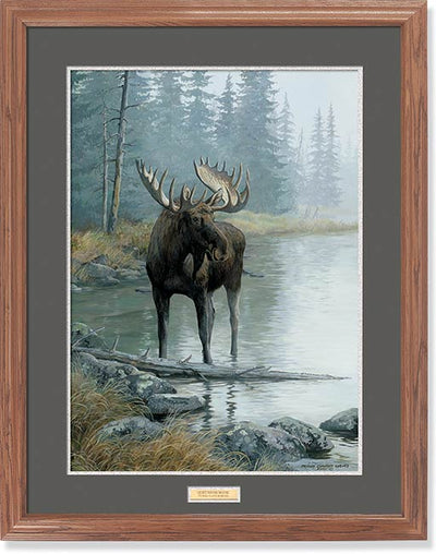 Quiet Water-Moose Art Collection