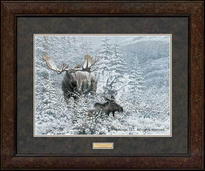 <I>Patient Suitor&mdash;moose</i> Gna Premium+ Framed Print<Br/>29H X 35W Art Collection