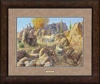 <I>Sonora Sunrise&mdash;mule Deer</i> Gna Premium+ Framed Print<Br/>29H X 35W Art Collection