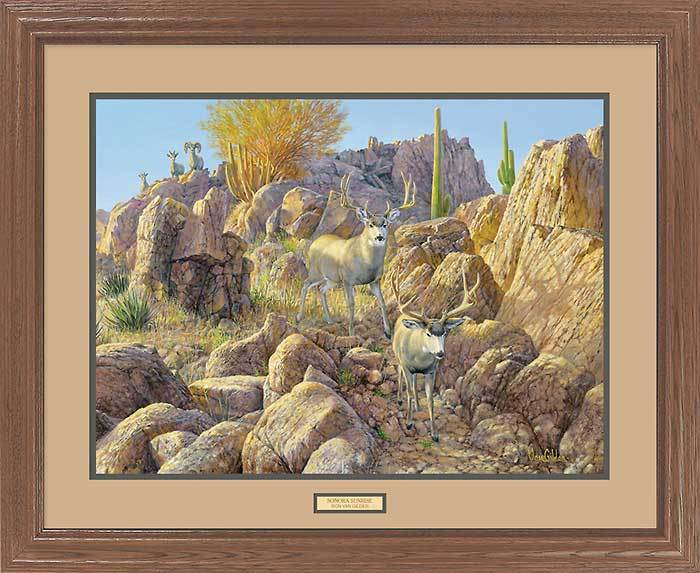 <I>Sonora Sunrise&mdash;mule Deer</i> Gna Premium Framed Print<Br/>25H X 31W Art Collection