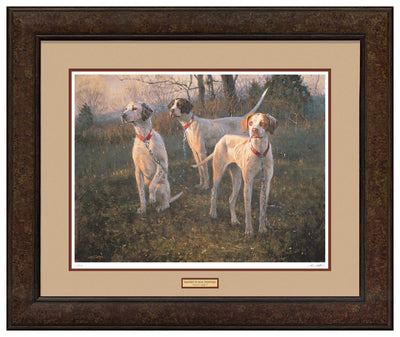 Waiting to Run—English Pointers