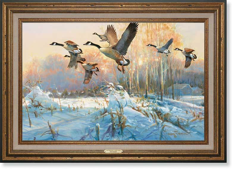 Late Departure—canada Geese Framed Gallery Canvas