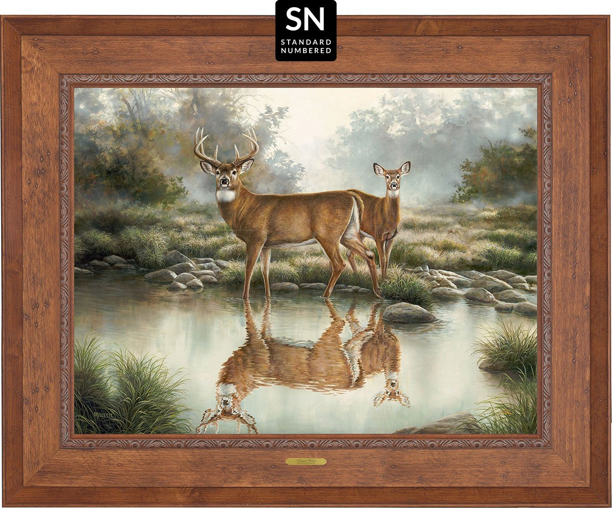 Tranquil Waters—Whitetail Deer;  Master Artisan Collection - Standard Numbered Edition (SN)