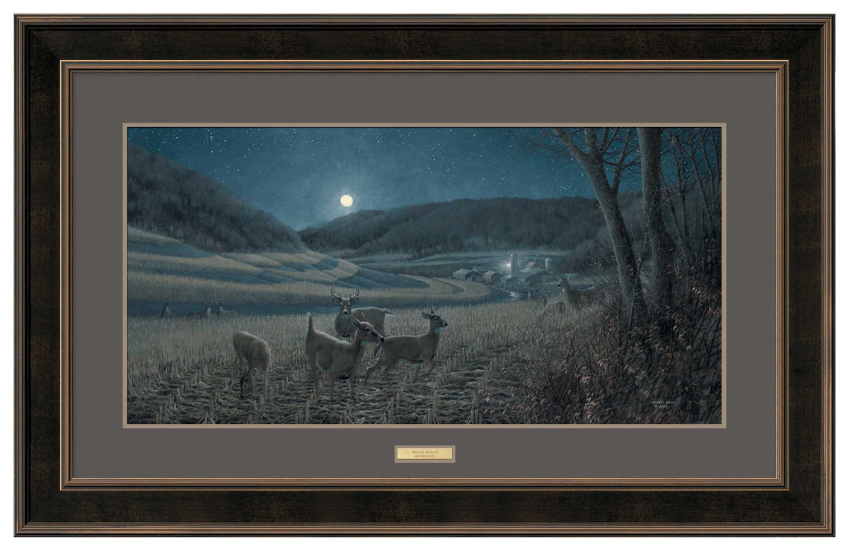 Night Moves—Whitetail Deer