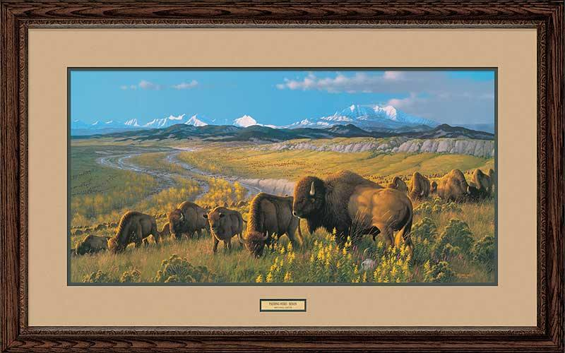 The Passing Herd-Bison Art Collection