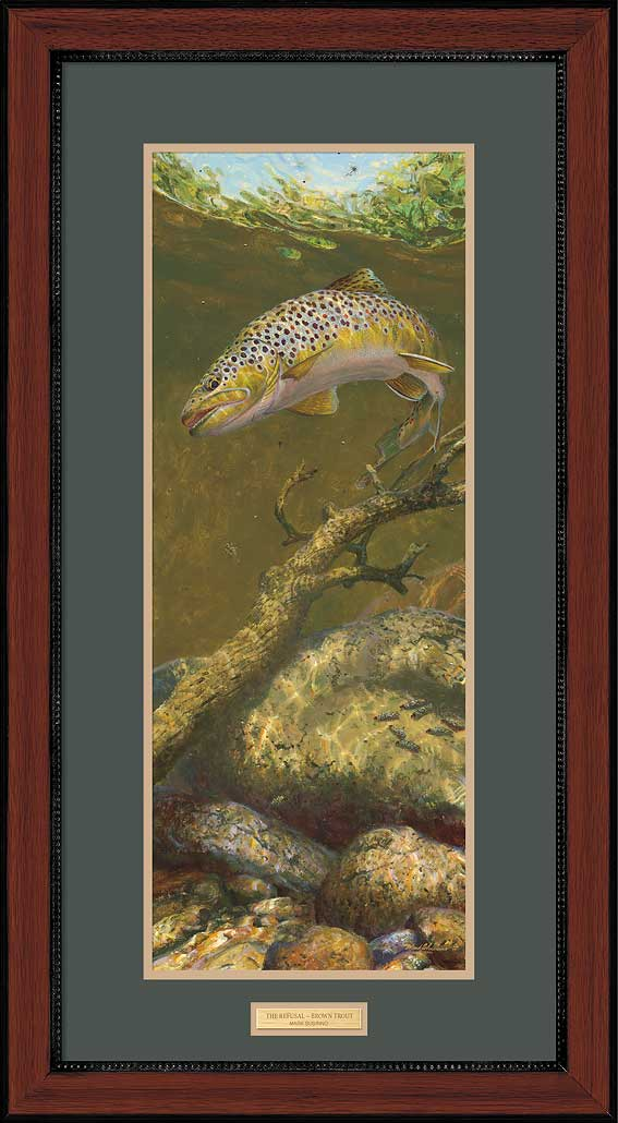 The Refusal—Brown Trout.