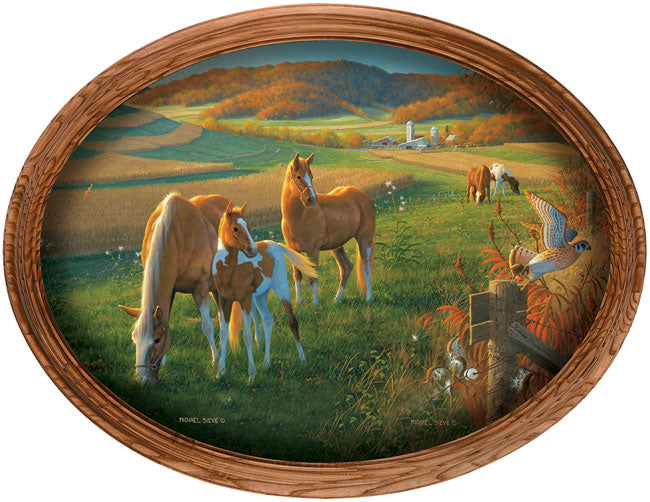God's Country-Horses Art Collection