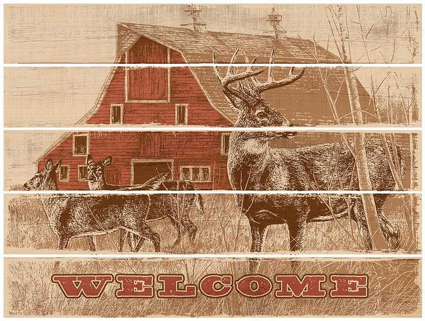 Deserted Farmstead—whitetail Deer 18 X 24 Pallet Art Sign