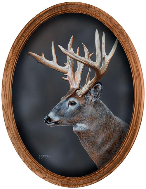 <I>Whitetail Deer Portrait</i> Framed Canvas Oval