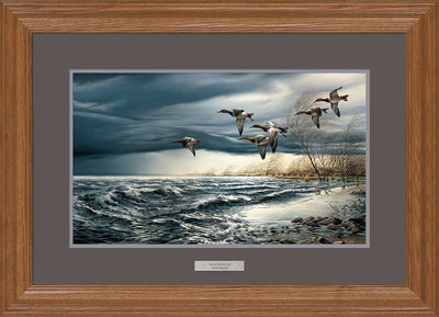 Whitewater-Canvasbacks Art Collection