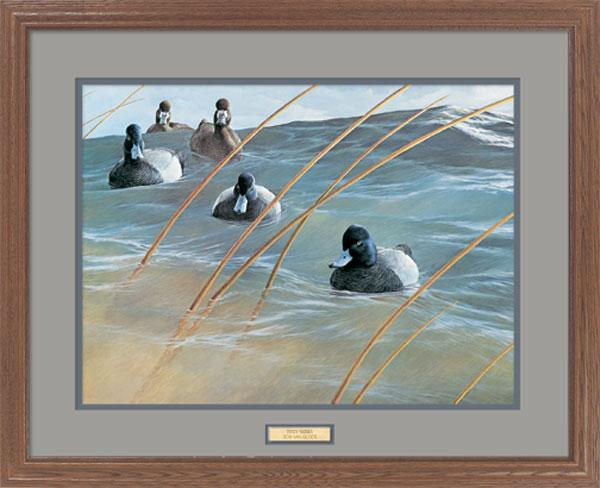 <i>Windy Waters&mdash;Bluebills</i>