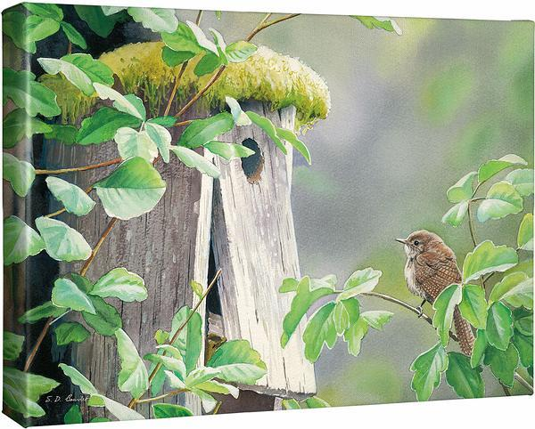 <I>A Fixer Upper&mdash;house Wren</i> Gallery Wrapped Canvas