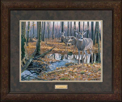 <i>After the Rain&mdash;Whitetail Deer</i>