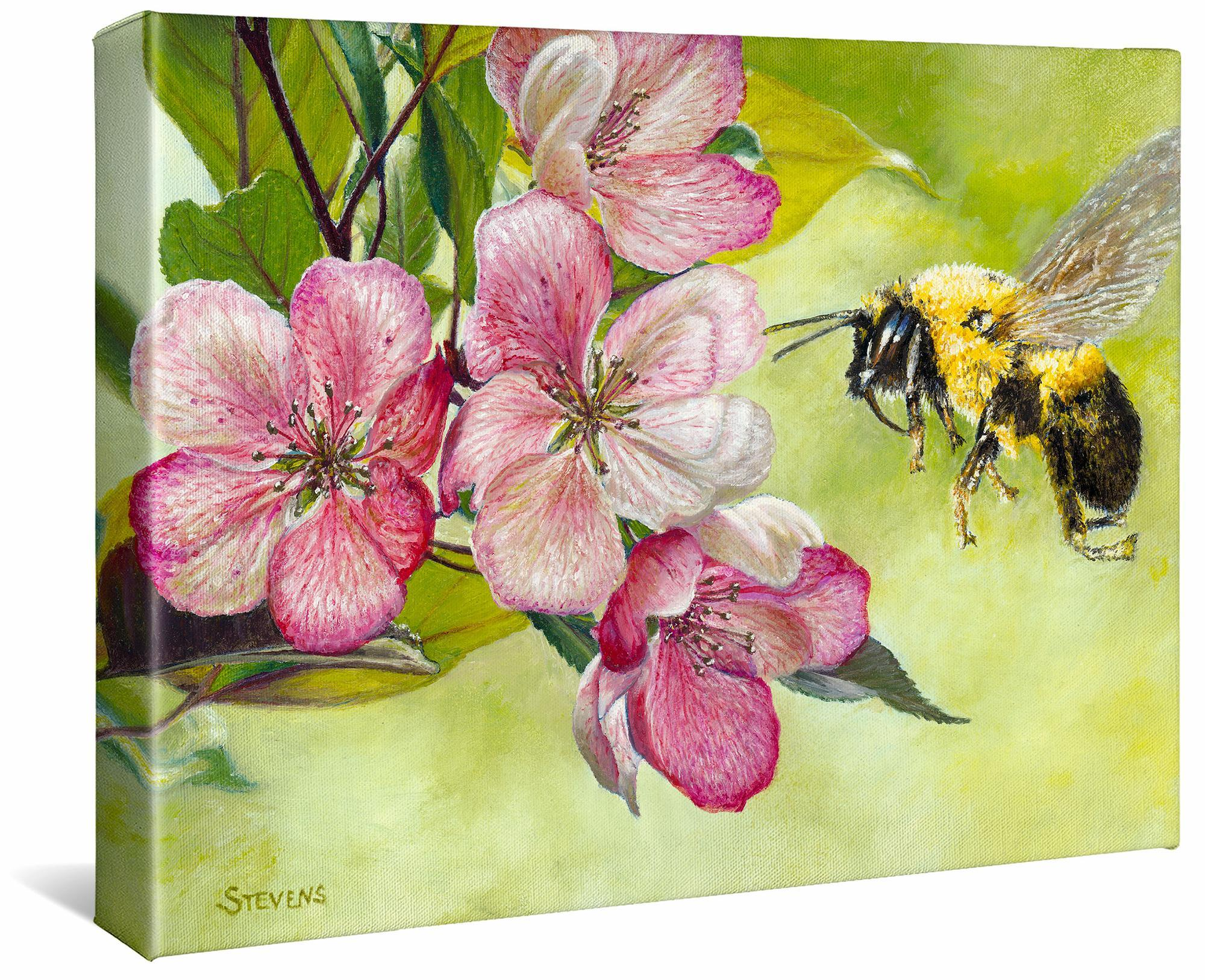 Apple-Bee Gallery Wrapped Canvas