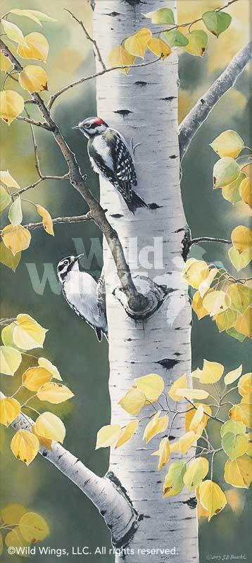 <i>Autumn Afternoon&mdash;Woodpeckers</i>