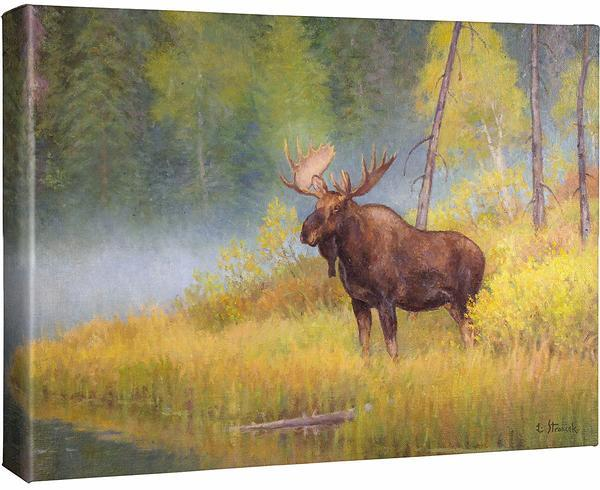 <I>Autumn Bull&mdash;moose</i> Gallery Wrapped Canvas