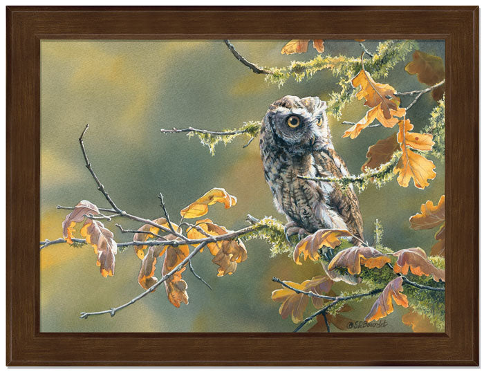 Autumn Oak-Screech Owl Art Collection