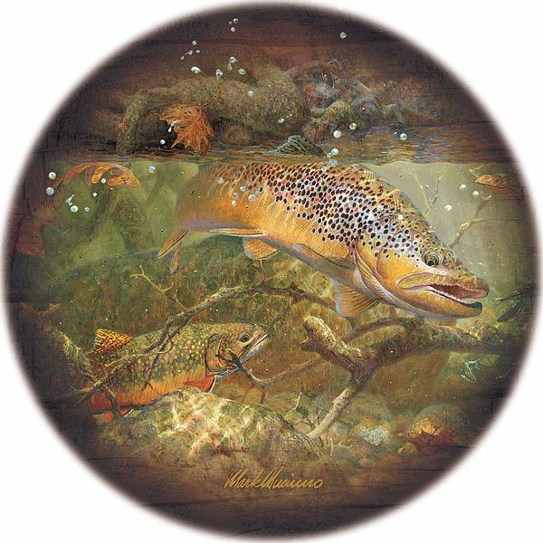Autumn—Trout