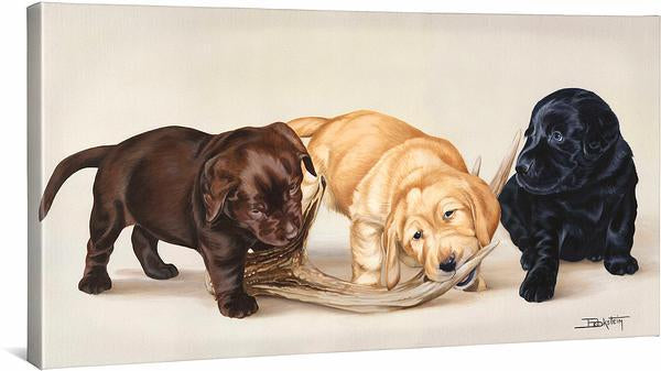 <I>Bad Boys&mdash;labs</i> Gallery Wrapped Canvas