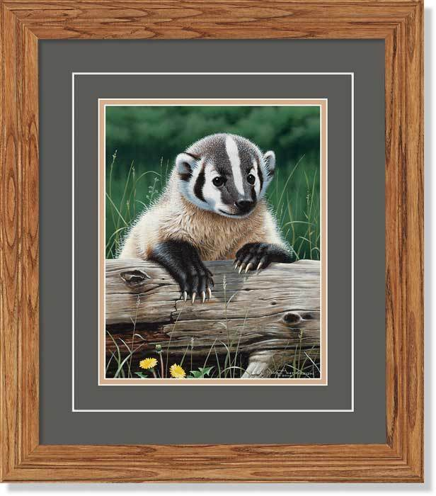 Out Of The Meadow—badger Gna Deluxe Framed Print