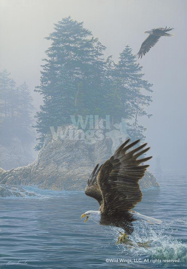Fly Fishing—Bald Eagles