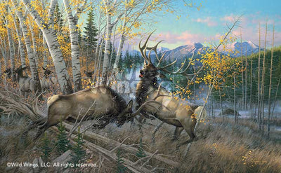 Battling Elk Art Collection