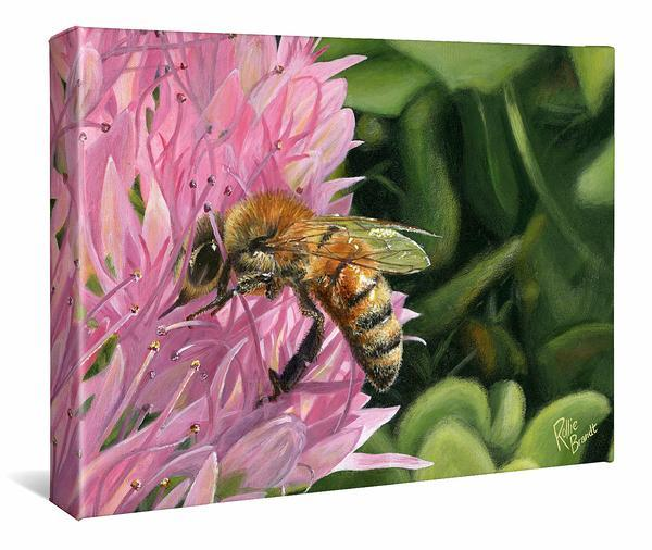 Bee Happy—honeybee Gallery Wrapped Canvas