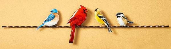 Songbirds on a Wire.