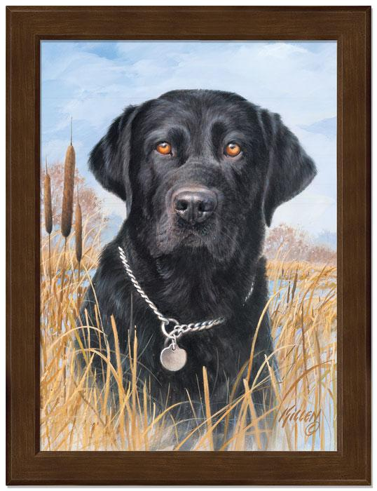 Thats My Dog Too!—black Lab Framed Studio Canvas