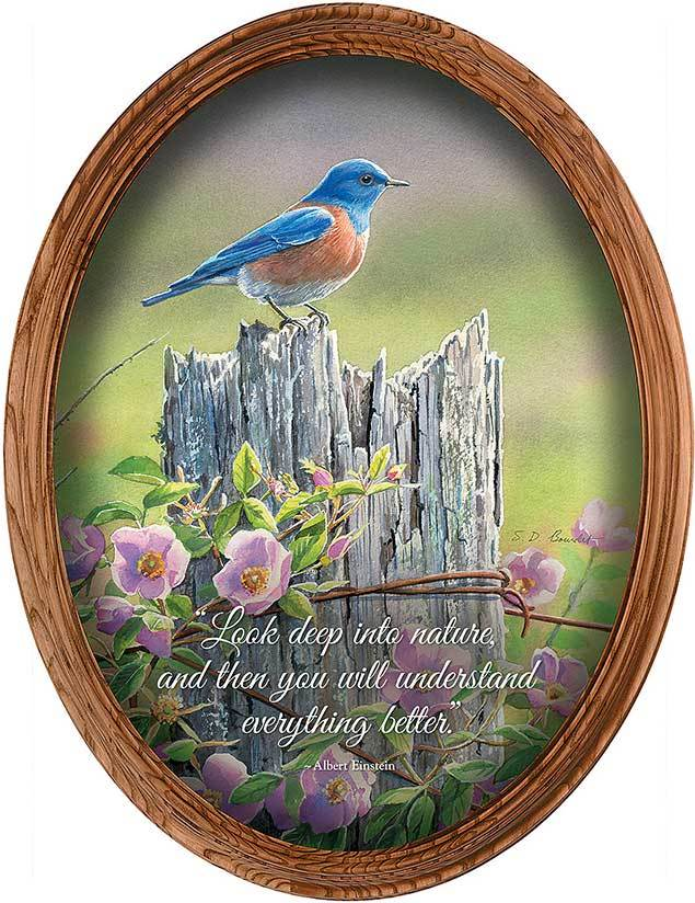 <I>Spring Meadow&mdash;bluebird</i> Framed Inspirational Oval