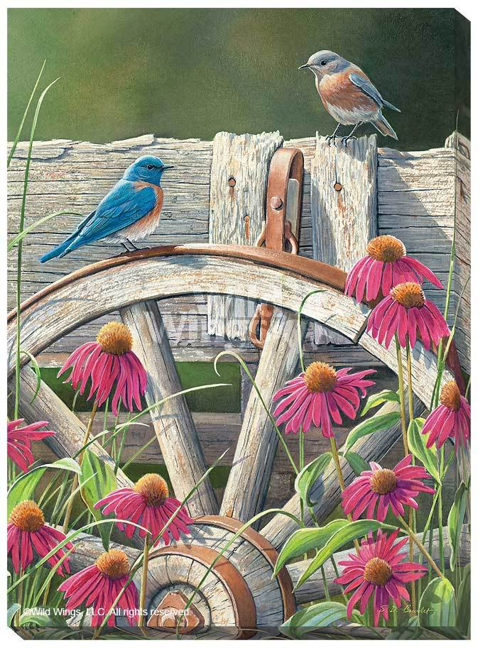Bluebirds & Coneflowers.