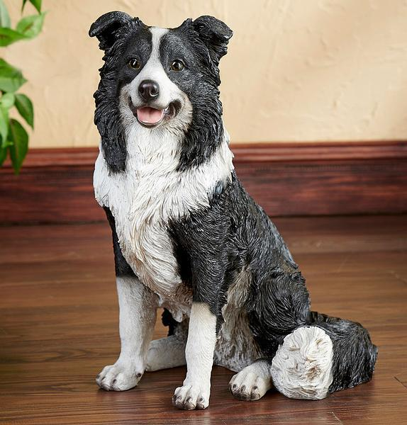 a black and white dog sitting on top of a wooden table