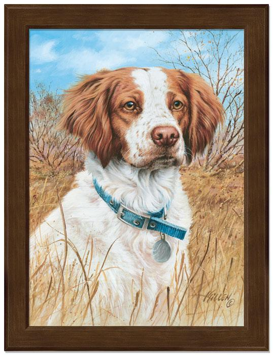 Thats My Dog Too!—brittany Framed Studio Canvas