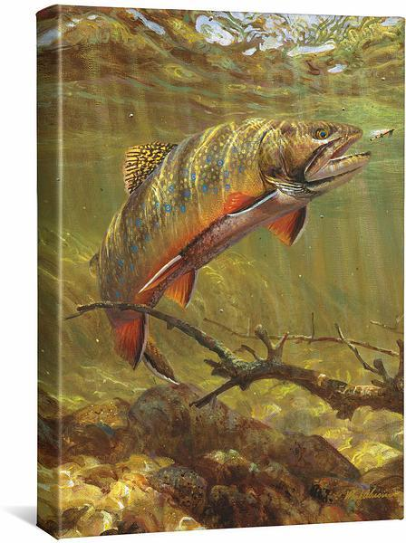 <I>Brook Trout & Royal Coachman</i> Gallery Wrapped Canvas