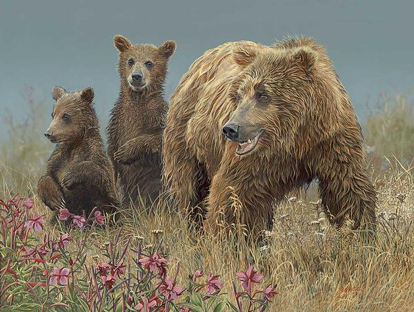 Brown Bear & Cubs Art Collection
