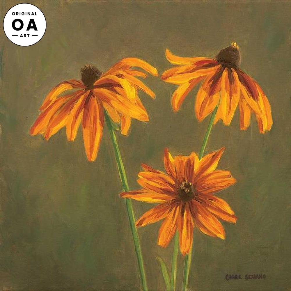 Brown—eyed Susans.