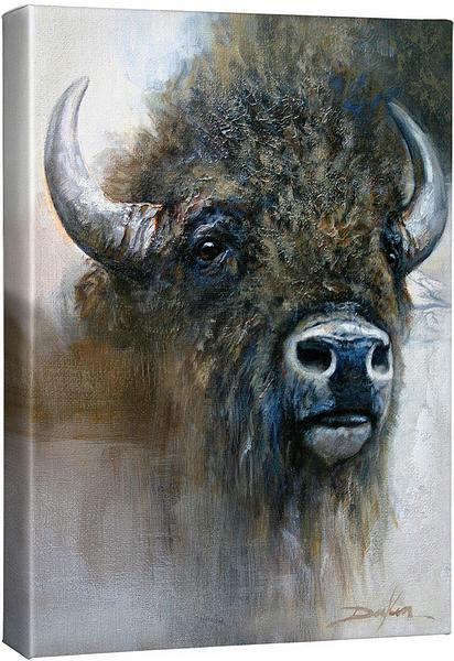 <I>Buffalo Portrait</i> Gallery Wrapped Canvas
