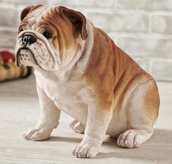 Sitting Bulldog.