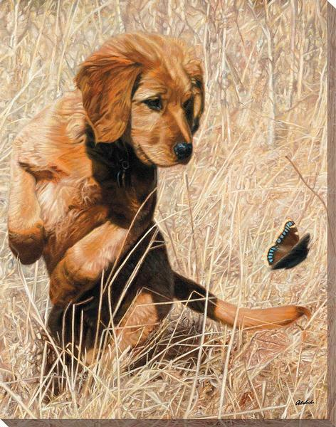 <I>Butterfly Dance&mdash;golden Retriever</i> Wrapped Canvas<Br/>20.5H X 16W Art Collection
