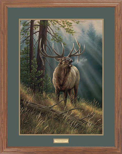 Calling all Challengers-Elk Art Collection