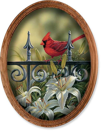 Backyard Beauties-Cardinal Art Collection