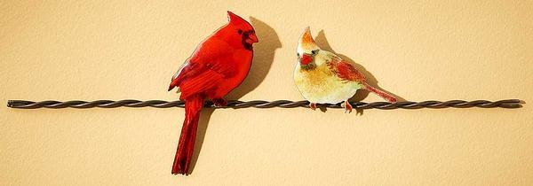 Cardinal Pair on Wire