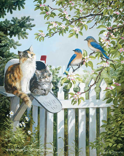 Special Delivery-Cats & Birds Art Collection