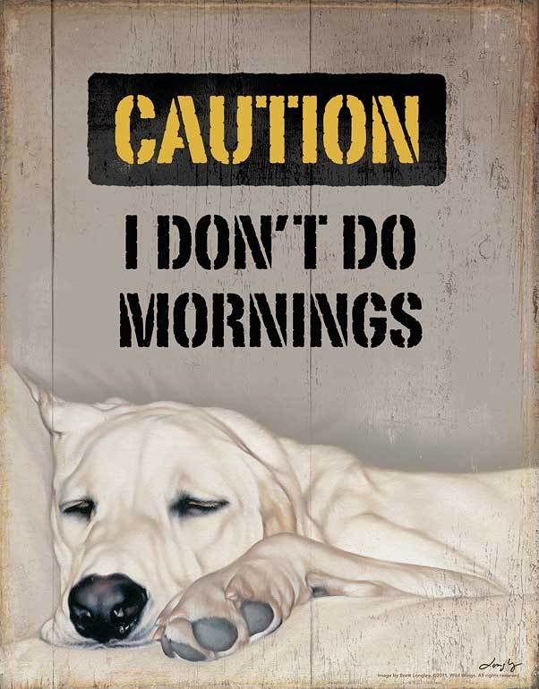 I Dont Do Mornings Tin Sign