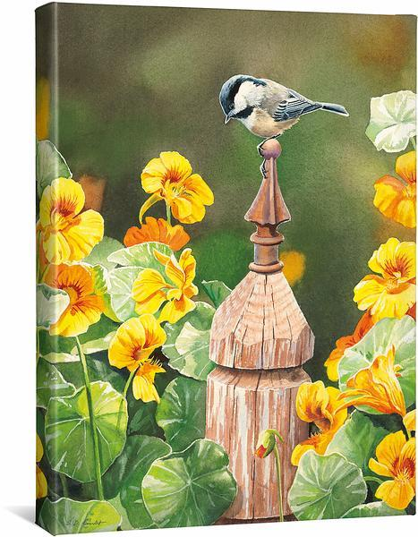 <I>Chickadee & Nasturtiums</i> Gallery Wrapped Canvas